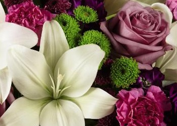 Variety of fresh flowers for delivery in Aurora , IL 60504